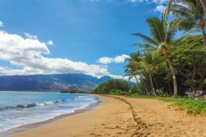 Maui beach in December, January, and February